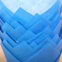 Tulip muffin cups  blue