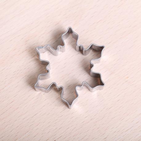 Kleine sneeuwvlok / ijskristal