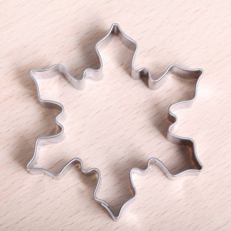 Snowflake / ice crystal