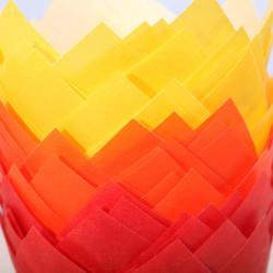 Tulip muffin cups Herfst