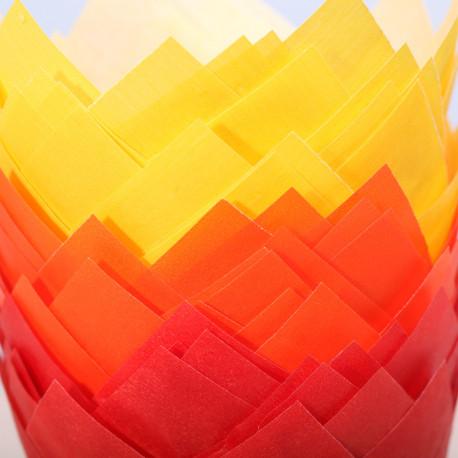 Tulip muffin cups Autumn