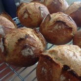 Mini boule versions of the Baguette boule recipe