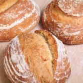Semolina & Sesame loafs ready!