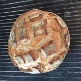 Maria Smit - San Francisco style Sourdough first try, major succes!