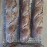 Darna Weinstein - The other Weekend Bakery baguette recipe