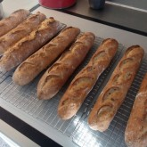 Darna Weinstein - Baguettes with blond linseed.jpg
