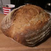 Mitch - love making sourdough, still get a thrill when ever i see the starter all bubbly