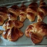 Amy - croissants