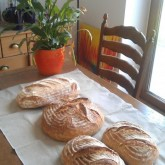 Mirela Giles - Baking loaves with Weekend Bakery tools in Romania.