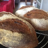Bjorn Mateijsen whole wheat levain