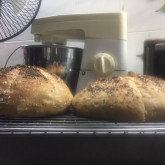 M. Penlucksana - My first Baguette Boules (BB Recipe)