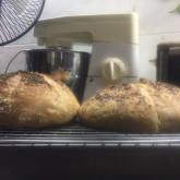 M. Penlucksana - My first Baguette Boules (BB Recipe)
