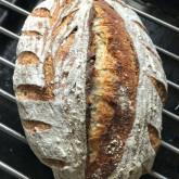 Stefano Ferro - Sourdough bread with walnuts based on sourdough pain naturel