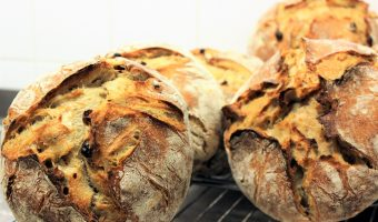 Guest posting: Vincent van der Wolf – The road from sprout to crumb & Dutch soil sourdough recipe